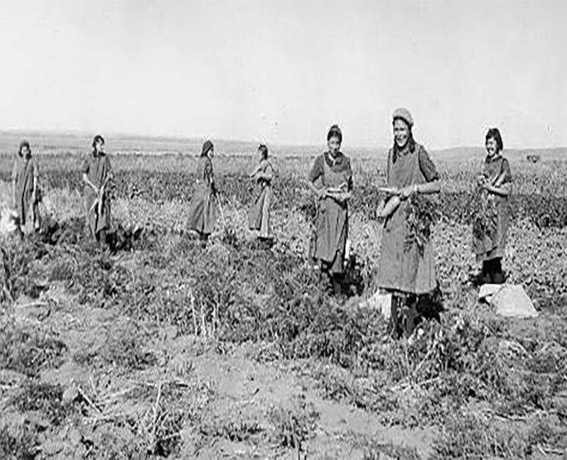 Group of people in field at Old Sun Blackfoot school