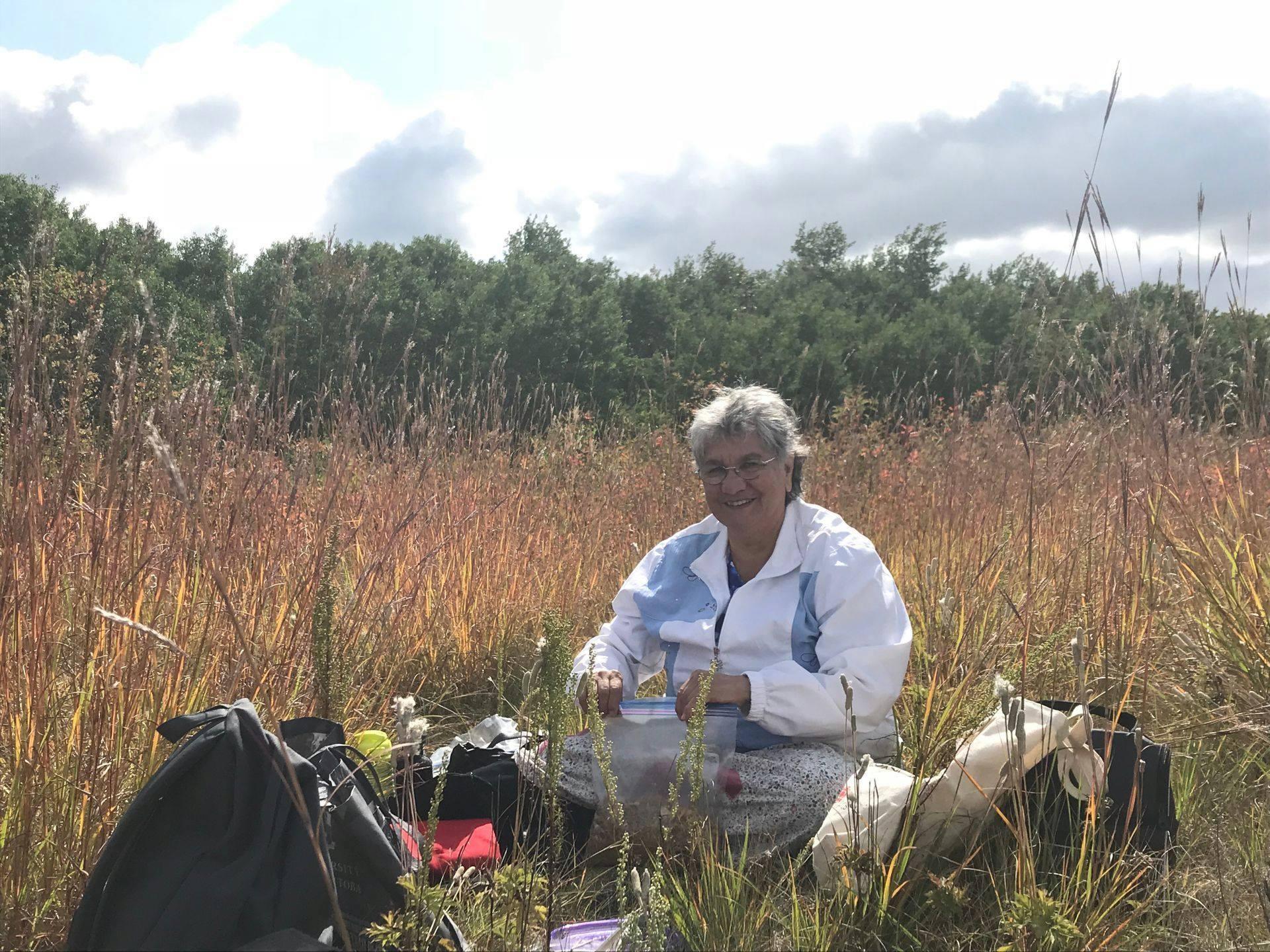 Woman sitting harvesting medicine in field